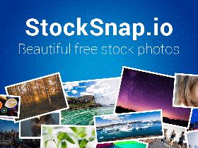 StockSnap 第一免费的照片分享网站,完全免费